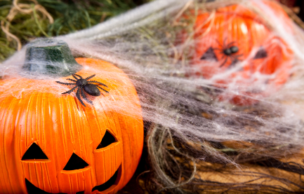 Pumpkin_Spiderwebs